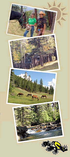 Los Pinos Guest Ranch
